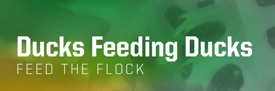 Ducks Feeding Ducks: Feed the Flock